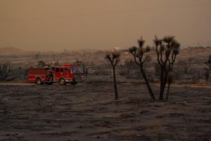 Southern California wildfire grows, burns nature centre