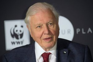 David Attenborough to address leaders at UN climate summit